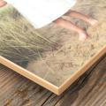 Light Oak Edge Art Print-Close View